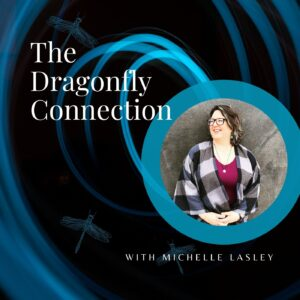 The Dragonfly Connection Amber Cook Michelle Lasley