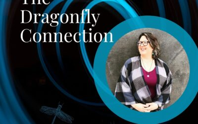 A conversation with Amber Cook on the Dragonfly Connection